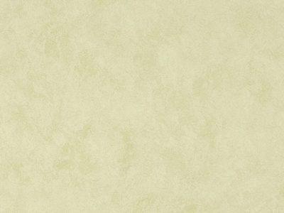 importado-colours-ref-WW-116-24