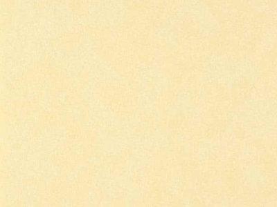 importado-colours-ref-WW-116-26